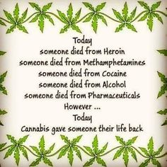 CBD is a remarkable versatile option for wellness! So grateful I'm part of the CBD Phenomenon. :-) Get your healing CTFO C B D oil and a great business opportunity here today :-) Cbd Hemp Oil, Helping People, Memes, The Cure, Blog, Opportunity, Oil Benefits, Smoking Weed, Masks