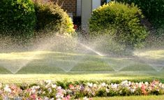 Spring Irrigation Start-Up and Tune-Up of your Existing System