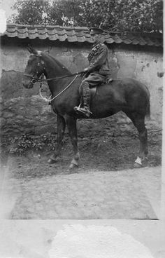 World War 1 War Horse. This is the Great Grandfather of a friend of mine who served as a farrier during the war. You can see by this horse's stance and head carriage that he was a carriage horse and not a riding horse. He looks like a Cleveland Bay! Wonder what happened to him 
