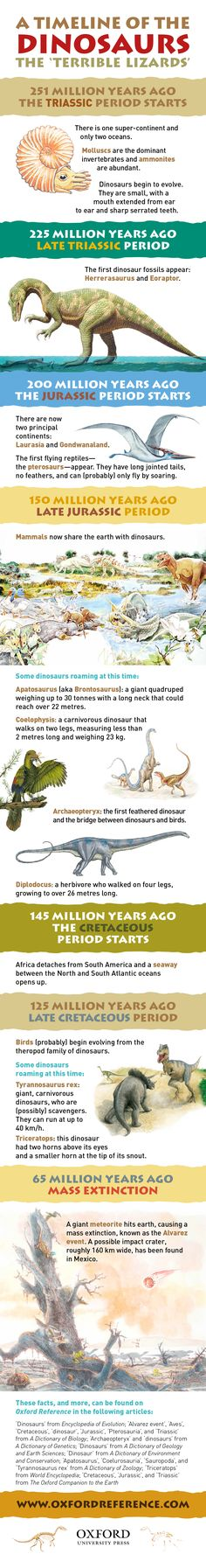 Take a crash course on the history of the dinosaurs, including what types of dinosaurs were roaming when, with this infographic.
