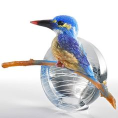 To See, Is To Believe - Kingfisher