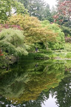 Reflections in the Sunken Garden pond. Sunken Garden, Garden Pond, Garden Paths, Muse Art, Vancouver Island, Golf Courses, Tourism, Canada, River