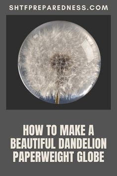 Remember plucking dandelions and blowing them off the stem as they flew into the air? SHTFPreparedness has a great way to preserve beautiful dandelions into a paperweight globe. Putting aside nostalgia for a moment, dandelions are also a valuable survival resource and we explain a bit why you want to add them to your checklist when the SHTF. We show you how to prepare them for when you need them the most. So enjoy your globe by learn more… #dandelions #dandelionglobe #dandelionsforsurvival Survival Prepping, Emergency Preparedness, Easy Diy Projects, Garden Projects, Dandelion Paperweight, Best Money Saving Tips, Great Life, Dandelions, Useful Life Hacks