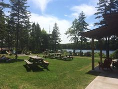 Stop by and have a picnic at our lakeside oasis! Memories With Friends, Boathouse, Oasis, Picnic, Water, Landscape Rake, Gripe Water, Picnics, Boat Dock