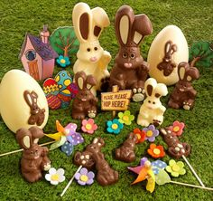 Happy Harry Hopalot at Thorntons for Easter! Isn't he too cute to eat?