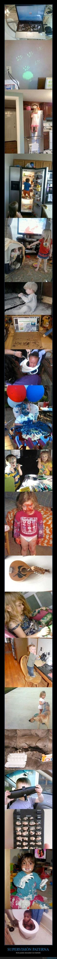 I look at these pictures and wonder how long where they unsupervised? Haha
