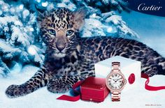 Cartier invites you to enjoy its magical Winter Tale. Two panther cubs play hide and seek in a snow-laden forest of fir trees. Panther Cub, Baby Panther, Illuminati, Coco Chanel, Cartier Panthere, Holiday List, Cartier Jewelry, Jewellery, Luxury Packaging