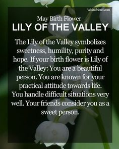 Which is the Birth Flower for May? Know about the May Birth Flower Lily of the Valley here. Find the meaning of May Flowers here. May Birth Flowers, May Flowers, Sugar Flowers, Amazing Flowers, May Birthday, Birthday Stuff, Birthday Month, Birthday Quotes, Etiquette Vintage