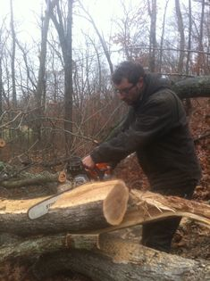 How to safely use a chainsaw to cut down trees, firewood/sharpen dull chain saw