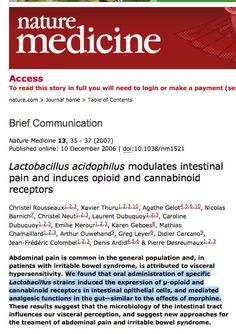 """""""Lactobacillus strains induced the expression of μ-opioid and cannabinoid receptors in intestinal epithelial cells, and mediated analgesic functions in the gut—similar to the effects of morphine."""" 