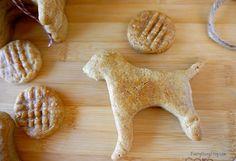Homemade Dog Treat Recipe–Peanut Butter Cookies - EverythingEtsy.com