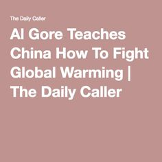 Al Gore Teaches China How To Fight Global Warming | The Daily Caller