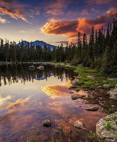 Finch Lake Trail, Rocky Mountain National Park.   Dept. Of Interior