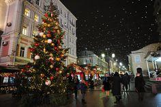 La imagen puede contener: árbol de Navidad, noche y exterior