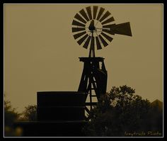 I think this is the Texas Prairie Water Co. Water Wheels, Old Windmills, Wind Mills, Great Plains, Country Scenes, Rustic Barn, Barns, Wind Turbine, How To Become