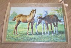 Glass Serving Tray with Oak Frame Horse Foals Yearlings