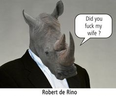 Robert de Rino : c'est la fin de l'année, dis-moi enfin la vérité, did you fuck my rhino ?