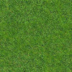 seamless grass texture - Google Search