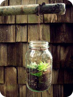 Mason Jar Terrarium {DIY}