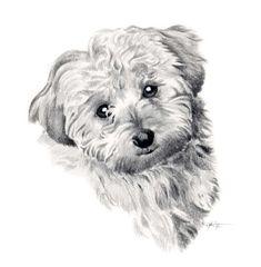 Impresión del arte de perro COCKAPOO firmado por por k9artgallery