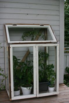 Greenhouse made of old windows Backyard Greenhouse, Small Greenhouse, Greenhouse Plans, Greenhouse Wedding, Greenhouse Kitchen, Balcony Gardening, Kitchen Gardening, Urban Gardening, Gardening Tips
