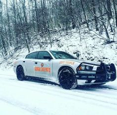 Silver Georgia State Patrol State Trooper Dodge Charger Slicktop