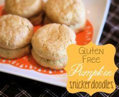 Gluten free pumpkin snickerdoodles - Ask Anna