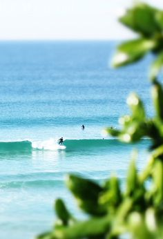 Early surf sessions with friends in a tropical location? Sounds like heaven. Wanderlust Travel, Bali Travel, Hawaii Travel, Kauai Hawaii, Paradis Tropical, Franck Provost, Surf Style, Salt And Water, Water 3