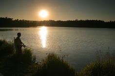 rybník Rosnička u Svitav