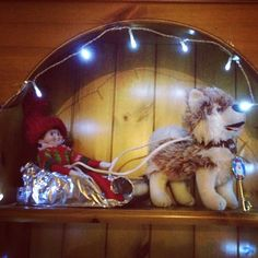 Elf on the shelf- husky sleigh ride