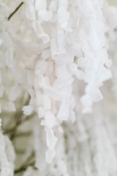 DIY Paper Wisteria Backdrop - photo by Emily Chidester - http://ruffledblog.com/diy-paper-wisteria-backdrop