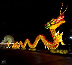 Lantern Festival, Missouri Botanical Garden