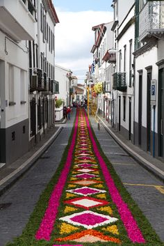 Dia de festa em São Miguel, Açores,Portugal. Tapete de Flores por onde passará a procissão.