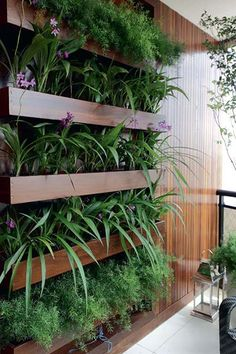 Vantagens em ter um jardim vertical em casa