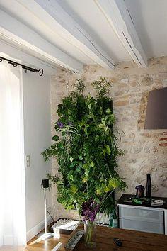 L arceau le vert soi v g talisation fenetre pinterest - Mur vegetal d interieur ...