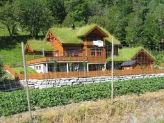 The norwegian government pays property owners to maintain grass roofs to preserve their cultural heritage. Goats will frequently get on top of the roof to trim the grass.  I love it.