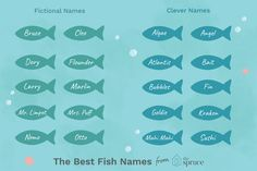 fish names ideas betta & fish names ideas ` fish names ideas funny ` fish names ideas cute ` fish names ideas betta ` fish names ideas pet Fish Names Pet, Beta Fish Names, Pet Fish, Pet Names, Fish Fish, Ocean Baby Names, Rat Terrier, Turtle Names, Names