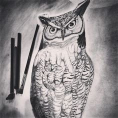 Owl drawing. Done with charcoal & graphite