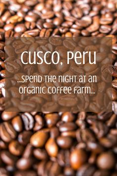While visiting Cusco, Peru this Solo Travel Society member took a tour to remember, visiting coffee and cacao plantations and staying with a local family. Peru Travel, Solo Travel, European Cafe, Coffee Farm, How To Order Coffee, Cusco Peru, Us Travel Destinations, Coffee Travel, Sweet