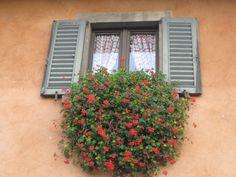 Bergamo, Italy. ~by Rebecca Hawkins
