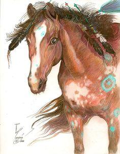 Sioux Horse