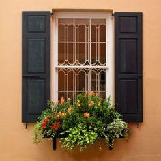 Charleston SC window