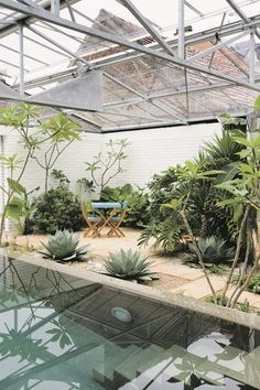 love this indoor dipping pool and garden