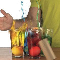 Egg Drop - Newton's Law of Inertia | Experiments | Steve Spangler Science