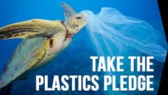 6 amazing plastic bans from around the world!