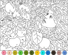 24 Best Color By Number Images Coloring Pages Colouring Pages