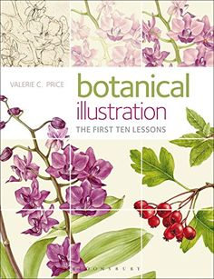 Botanical Illustration: The First Ten Lessons by Valerie C. Price http://www.amazon.co.uk/dp/1408152037/ref=cm_sw_r_pi_dp_M4WAvb176N258