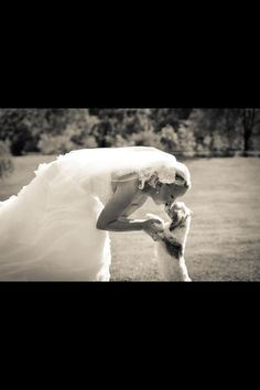 Weddings and pets