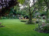Looking for backyard landscaping ideas? Check out Stunning Backyard Landscaping Ideas 2020 to get inspired to make your backyard even better. Landscape Borders, Landscape Designs, Landscape Plans, Nice Landscape, Landscaping Along Fence, Small Backyard Landscaping, Landscaping Ideas, Backyard Ponds, Backyard Privacy