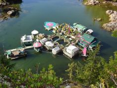 If there's no better way to live off the grid than to live on water, then this Canadian couple has been living the floating dream. Freedom Cove is their self-sustaining floating home complex in British Columbia. Wayne Adams and Catherine King Floating Island, Floating House, Floating Garden, Do It Yourself Camping, Floating Architecture, Eco Architecture, Self Sustaining, Floating Platform, Off Grid House
